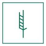 tratament lemn ISPM 15